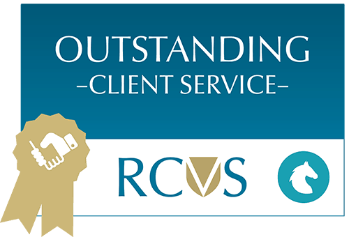 RCVS accredited equine Vet